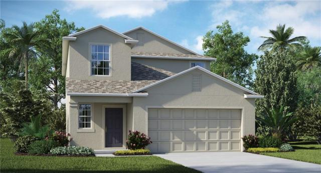17201 Yellow Pine Street, Wimauma, FL 33598 (MLS #T3136929) :: The Duncan Duo Team