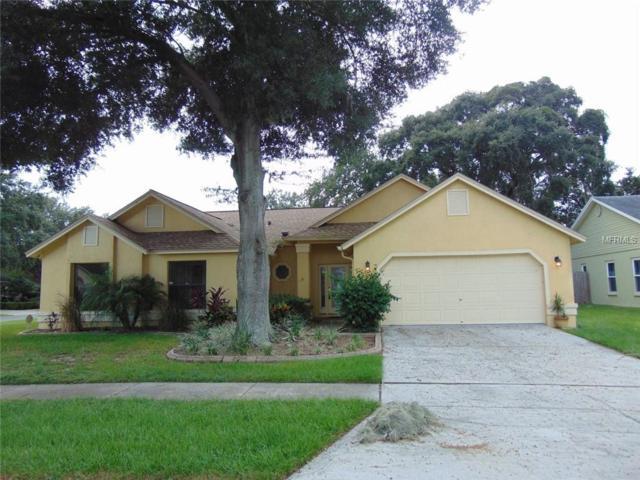 2014 Elk Spring Drive, Brandon, FL 33511 (MLS #T3137044) :: Florida Real Estate Sellers at Keller Williams Realty