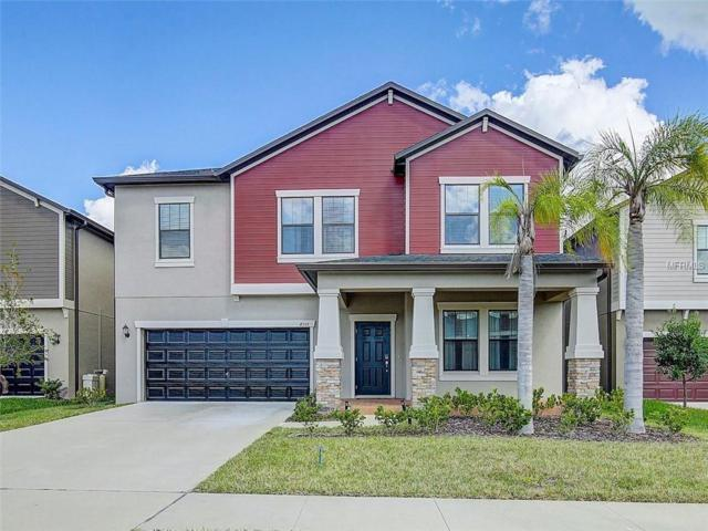 4358 Shrewbury Place, Land O Lakes, FL 34638 (MLS #T3137061) :: Team Virgadamo