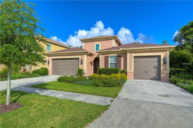 7237 Bay Laurel Court, Wesley Chapel, FL 33545 (MLS #T3137084) :: Delgado Home Team at Keller Williams
