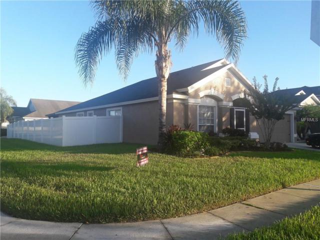 11602 Tropical Isle Lane, Riverview, FL 33579 (MLS #T3137091) :: FL 360 Realty