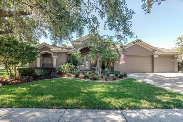 16712 Eagle Oak Drive, Odessa, FL 33556 (MLS #T3137127) :: SANDROC Group