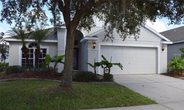 16312 Bridgecrossing Drive, Lithia, FL 33547 (MLS #T3137155) :: The Duncan Duo Team