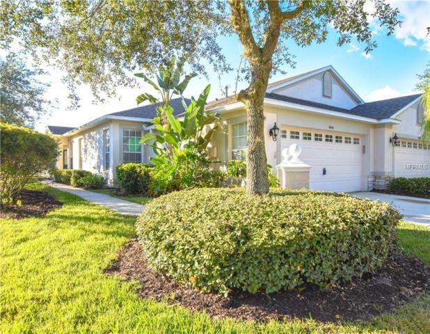 19144 Lake Audubon Drive, Tampa, FL 33647 (MLS #T3137166) :: Revolution Real Estate