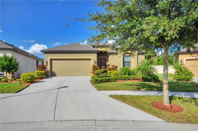 826 Vino Verde Circle, Brandon, FL 33511 (MLS #T3137191) :: Florida Real Estate Sellers at Keller Williams Realty