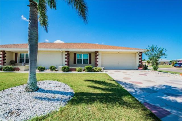 814 Bluewater Drive, Sun City Center, FL 33573 (MLS #T3137206) :: Team Bohannon Keller Williams, Tampa Properties