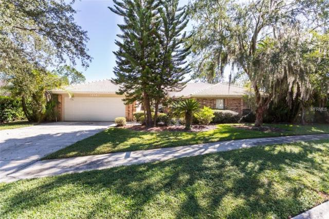 Address Not Published, Lutz, FL 33559 (MLS #T3137274) :: Mark and Joni Coulter | Better Homes and Gardens