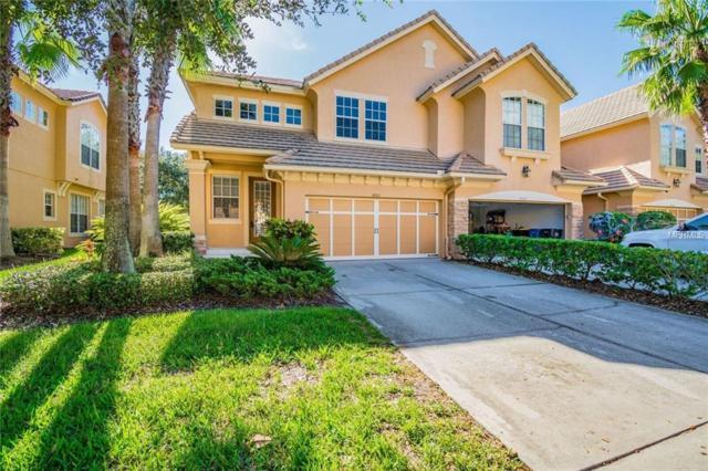 14531 Mirabelle Vista Circle, Tampa, FL 33626 (MLS #T3137319) :: Griffin Group