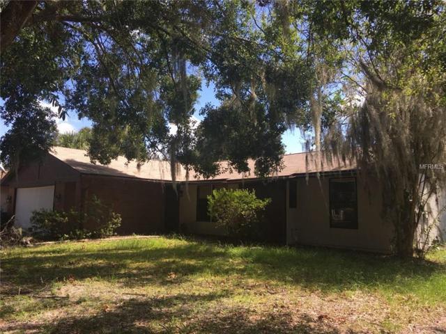 625 Cedar Grove Drive, Brandon, FL 33511 (MLS #T3137364) :: Welcome Home Florida Team