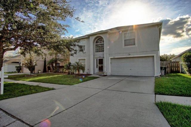 12923 Brookcrest Place, Riverview, FL 33578 (MLS #T3137404) :: CENTURY 21 OneBlue