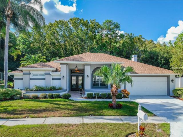 1433 Haverhill Drive, Trinity, FL 34655 (MLS #T3137414) :: Team Virgadamo