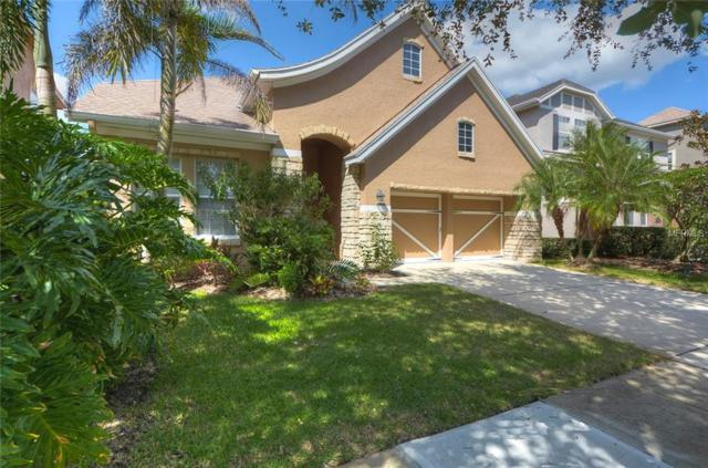 11605 Meridian Point Drive, Tampa, FL 33626 (MLS #T3137425) :: Andrew Cherry & Company