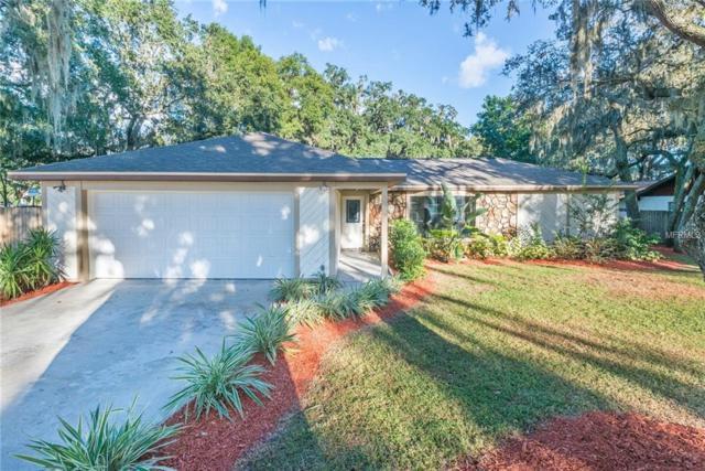 3401 Bent Oak Street, Valrico, FL 33596 (MLS #T3137447) :: Welcome Home Florida Team