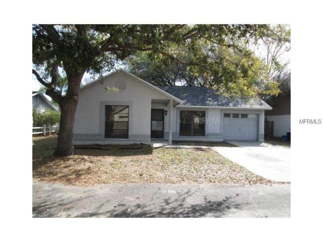 9508 Drakemill Court, Tampa, FL 33615 (MLS #T3137516) :: Revolution Real Estate