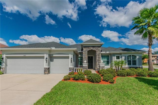 15421 Black Gold Loop, Odessa, FL 33556 (MLS #T3137560) :: Team Virgadamo
