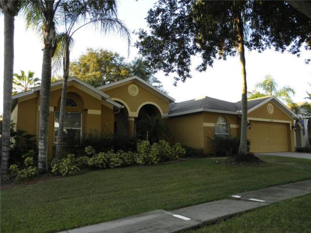 2404 Groveway Drive, Valrico, FL 33596 (MLS #T3137600) :: Welcome Home Florida Team
