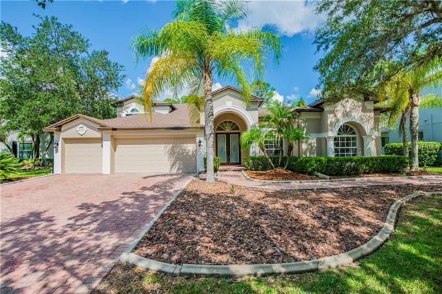 5046 Devon Park Drive, Tampa, FL 33647 (MLS #T3137616) :: Remax Alliance