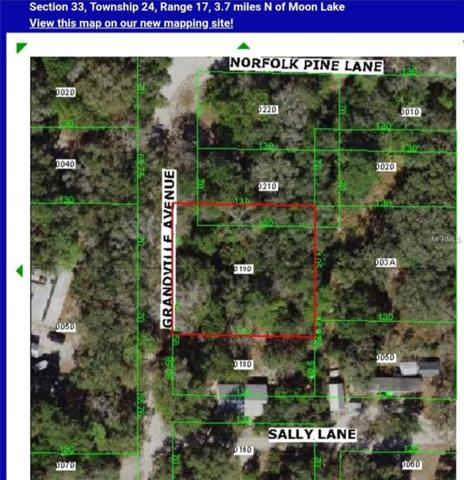 0 Grandville, Hudson, FL 34667 (MLS #T3137631) :: Team Virgadamo