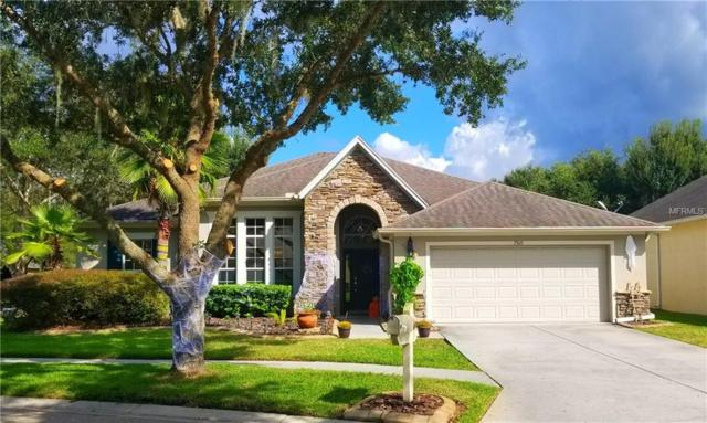 7510 Kickliter Lane, Land O Lakes, FL 34637 (MLS #T3137708) :: Griffin Group