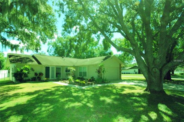 1721 Dove Field Place, Brandon, FL 33510 (MLS #T3137715) :: Florida Real Estate Sellers at Keller Williams Realty