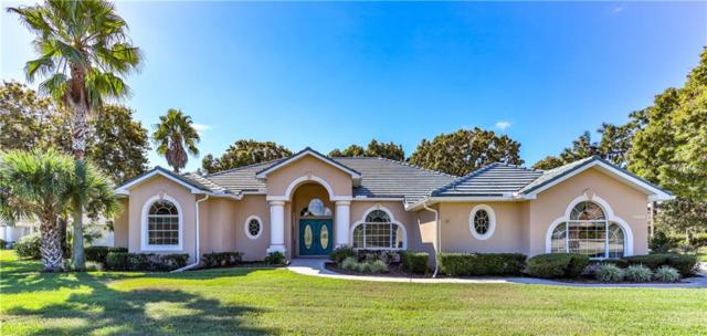 13420 Newcastle Avenue, Spring Hill, FL 34609 (MLS #T3137760) :: Premium Properties Real Estate Services
