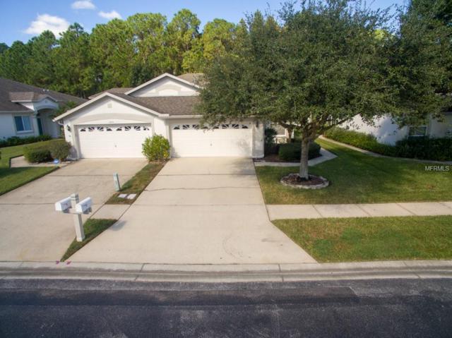 1701 Sassafras Drive, Wesley Chapel, FL 33543 (MLS #T3137786) :: CENTURY 21 OneBlue