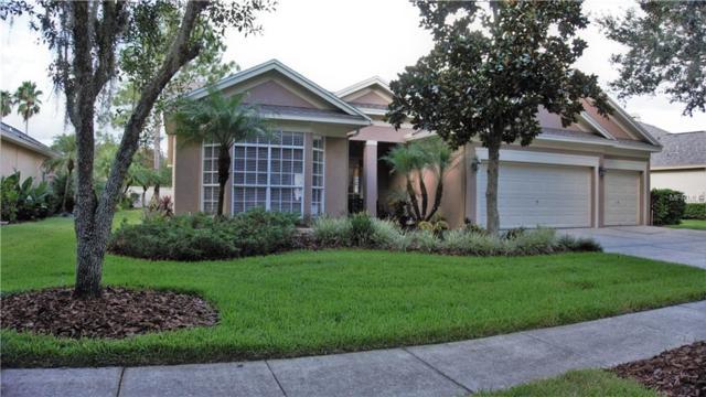 8750 Ashworth Drive, Tampa, FL 33647 (MLS #T3137950) :: Medway Realty