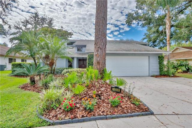 4510 Pine Hollow Drive, Tampa, FL 33624 (MLS #T3138121) :: Medway Realty
