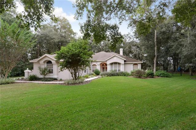 6029 Hammock Hill Avenue, Lithia, FL 33547 (MLS #T3138290) :: Dalton Wade Real Estate Group