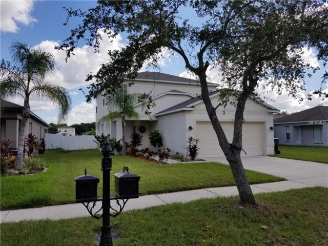 7911 Carriage Pointe Drive, Gibsonton, FL 33534 (MLS #T3138377) :: Premium Properties Real Estate Services