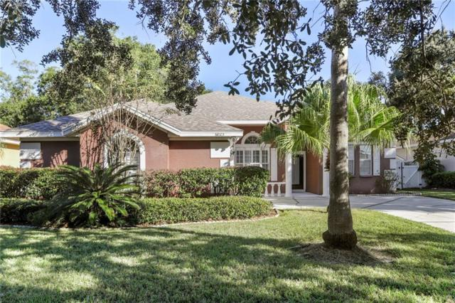6023 Williamsburg Way, Tampa, FL 33625 (MLS #T3138413) :: Team Bohannon Keller Williams, Tampa Properties