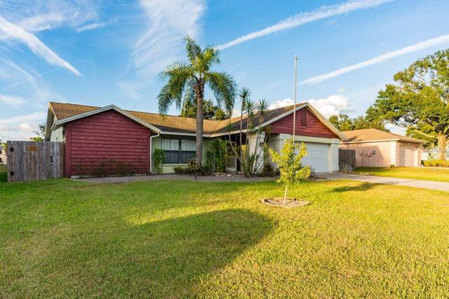2614 Bridle Drive, Plant City, FL 33566 (MLS #T3138452) :: Medway Realty