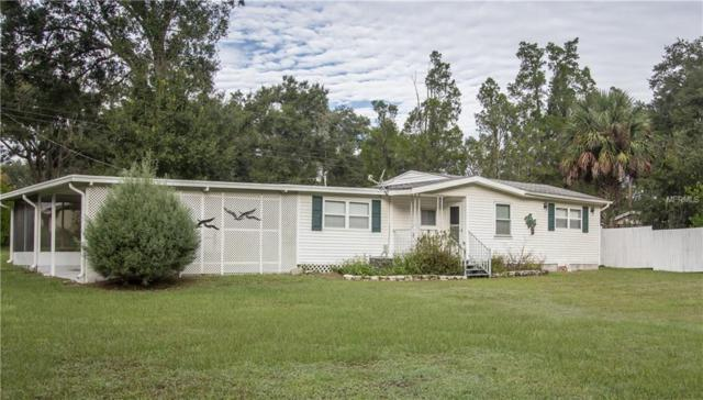 4401 Seaberg Road, Zephyrhills, FL 33541 (MLS #T3138915) :: Delgado Home Team at Keller Williams