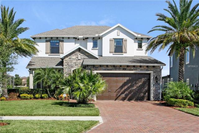 3998 Aldea Way, Wesley Chapel, FL 33543 (MLS #T3139028) :: Team Bohannon Keller Williams, Tampa Properties