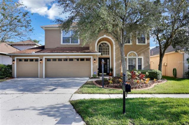 27730 Kirkwood Circle, Wesley Chapel, FL 33544 (MLS #T3139114) :: Griffin Group