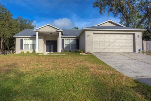 8420 Valrie Lane, Riverview, FL 33569 (MLS #T3139123) :: The Brenda Wade Team