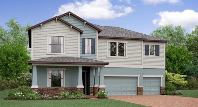 3013 Hilliard Drive, Wesley Chapel, FL 33543 (MLS #T3139127) :: The Duncan Duo Team