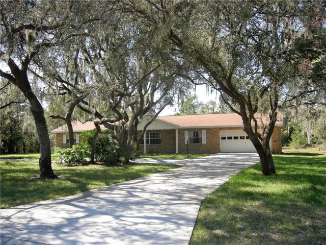 12703 Lake Hills Drive, Riverview, FL 33569 (MLS #T3139193) :: The Duncan Duo Team