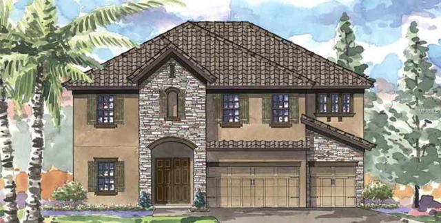 11350 Hawks Fern Drive, Riverview, FL 33569 (MLS #T3139215) :: Medway Realty