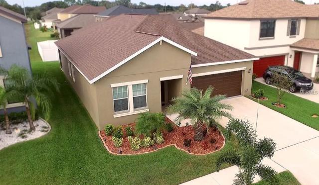 11718 Thicket Wood Drive, Riverview, FL 33579 (MLS #T3139253) :: Premium Properties Real Estate Services