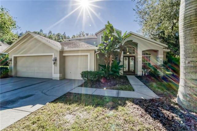6007 Catlin Drive, Tampa, FL 33647 (MLS #T3139315) :: Medway Realty