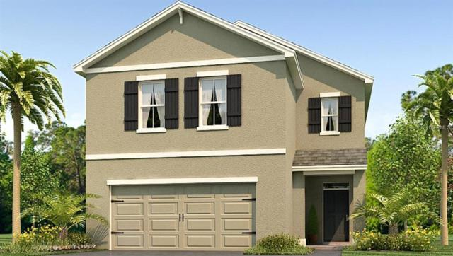 10215 Mangrove Well Road, Sun City Center, FL 33573 (MLS #T3139335) :: Medway Realty
