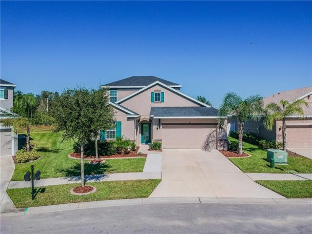 33283 Whisper Point Drive, Wesley Chapel, FL 33545 (MLS #T3139409) :: Cartwright Realty