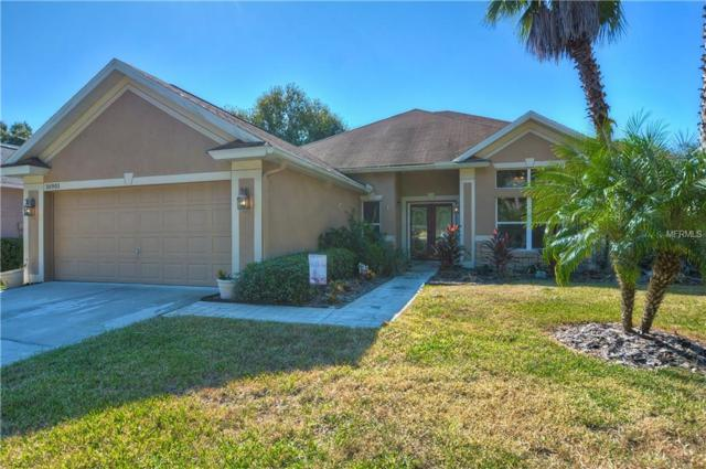 16901 Harrierridge Place, Lithia, FL 33547 (MLS #T3139425) :: The Duncan Duo Team