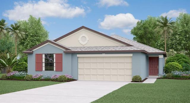 10010 Rose Petal Place, Riverview, FL 33578 (MLS #T3139441) :: Medway Realty