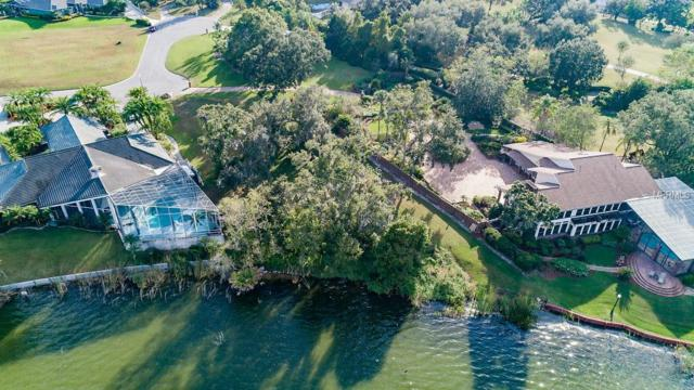 Pier Place Drive, Lakeland, FL 33813 (MLS #T3139450) :: Lovitch Realty Group, LLC
