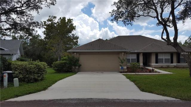 14 Witch Hazel Court, Homosassa, FL 34446 (MLS #T3139593) :: The Lockhart Team