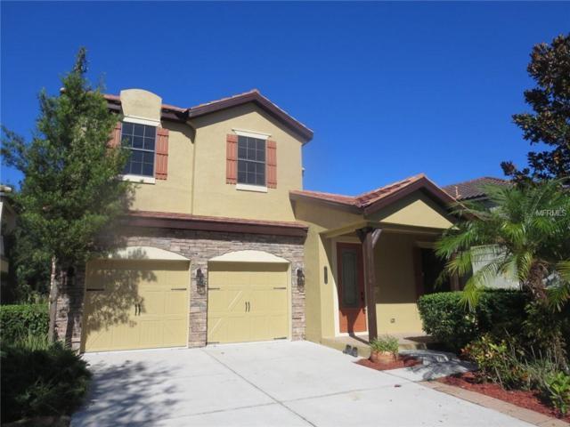 20310 Chestnut Grove Drive, Tampa, FL 33647 (MLS #T3139605) :: Team Bohannon Keller Williams, Tampa Properties