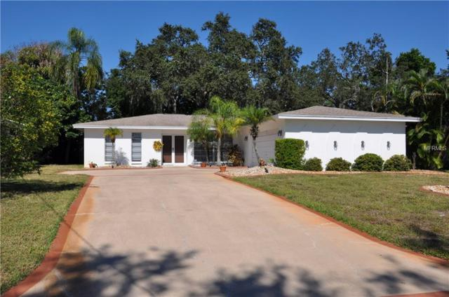 215 Westwinds Drive, Palm Harbor, FL 34683 (MLS #T3139668) :: Medway Realty