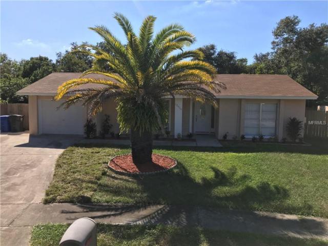 12419 Cardiff Drive, Tampa, FL 33625 (MLS #T3139687) :: Premium Properties Real Estate Services